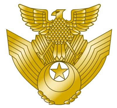 Japan Air Self Defense Forces