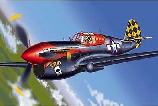 Curtiss P-40L Warhawk, 1:48, Franklin Mint