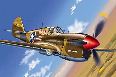 Curtiss P-40N (USAAF Dammit), Operation Torch., 1:48, Franklin Mint