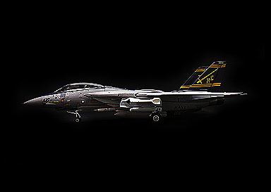 F-14 Tomcat, VF-32 Swordsman Cag Bird, 1:72, Witty Wings