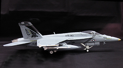F/A-18E SUPER HORNET VFA-143, WITTY WINGS