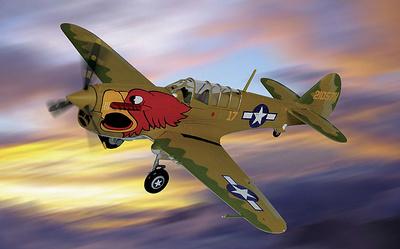 P-40 N Warhawk, army pilot class 43-K, 1:48, Franklin Mint
