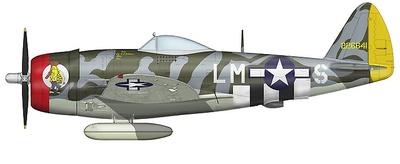 "P-47D Thunderbolt 56th FG, CO. Col. David Schilling, ""Hairless Joe"" England June 1944, 1:48. Hobby Master"