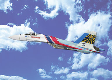 SU-27 Flanker, Russian Knights Display Team, 1:72, Witty Wings